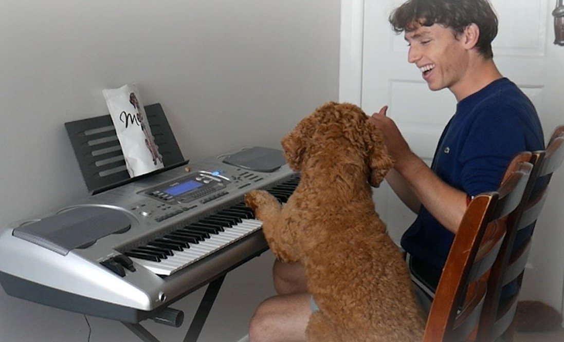 YouTuber Teaches His Dog To Play The Piano And It's The Most Wholesome Thing You'll See Today