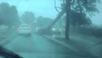 Australian Driver Escapes Death By Literal Inches