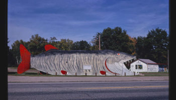 A Collection Of Classic Photos Of Giant Roadside Curios