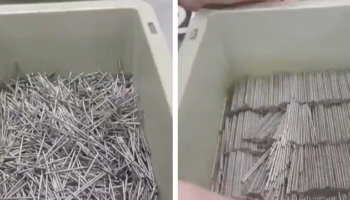 A Mesmerizing Hack To Organize A Box Of Nails