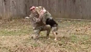 Here's The Moment A Soldier Surprises His Dog After A 6-Month Deployment