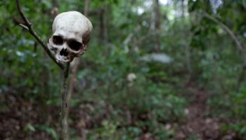 A Terrifying Journey Through The World's Most Dangerous Jungle (2016)
