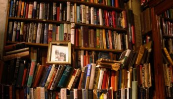 Better Late Than Never: On Blooming As A Reader