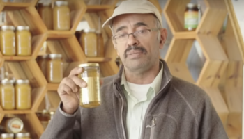 This Bay Area Bee-Keeper Has Over 10 Million Bees And Supplies NorCal With Honey