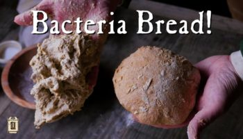 How 18th-Century People Made Bread With Wild Yeast And Bacteria
