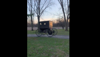 Woman Is Not At All Impressed By Her Husband's New Invention: A Self-Powered Amish Buggy