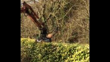 How Do You Trim The Hedge During Quarantine? With A Lawnmower And Mini-Digger, Of Course