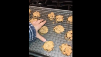 This Is Why You Don't Make Cookies On The Cooling Rack