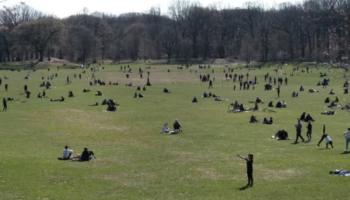 NYC May Temporarily Bury Coronavirus Victims In A Public Park
