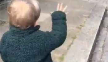 Extremely Friendly Toddler Saying Good Morning To Pretend Passerby Is The Most Uplifting Thing You'll See Today