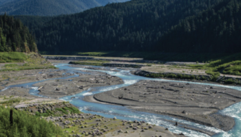 How A Dying River Came Roaring Back To Life