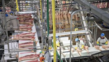 I Work At Smithfield Foods. I'm Suing Them Over Putting Our Lives At Risk For Your Dinner