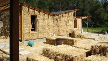 People Are Future-Proofing Their Homes With... Straw
