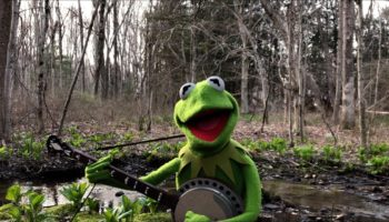 Kermit The Frog Gives A Beautiful, Heartwarming Rendition Of 'Rainbow Connection'
