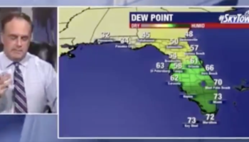 Meteorologist's Live Weather Forecast At Home Is Interrupted By Dog
