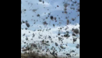 This Surreal Tumbleweed Tornado Is Not Quite Like Anything We've Seen Before