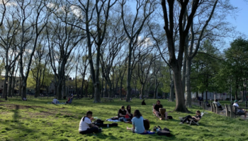 The Park Probably Isn't As Crowded As That Viral Photo Makes It Seem