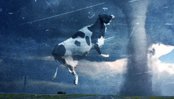 How They Made A Cow Fly Through A Tornado In 'Twister'