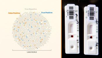 Coronavirus Antibody Tests Generate More False Positives Than Real Ones, So We Need Better Methods