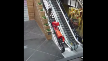 Man Makes The Grave Mistake Of Taking Two Paper Bins Up The Escalator, Ends Up Sorely Regretting It