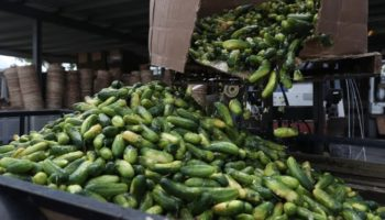 The Coronavirus Broke The Food Supply Chain. Here's How To Fix It