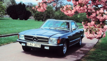 A Field Guide To The Most Popular Yuppie Cars