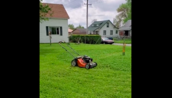Man Comes Up With Ingenious Way To Mow The Lawn Without Doing It Himself