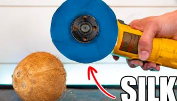 Can A Blade Of Silk Cut Through A Coconut?