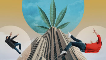 Lavish Parties, Greedy Politicians And Panic Rooms: How The 'Apple Of Pot' Collapsed
