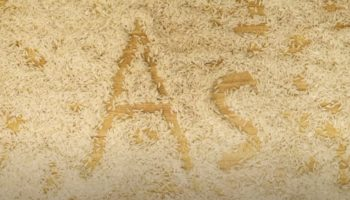 There's Surprising Levels Of Arsenic In Rice — Is It Still Safe To Eat?