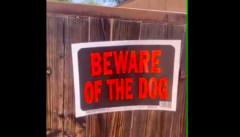 Dog Behind 'Beware Of The Dog' Sign Is Super Intimidating And Not At All Adorable