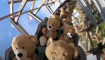 This Video Of 22 Oversized Teddy Bears Riding A Roller Coaster Is… Utterly Delightful?