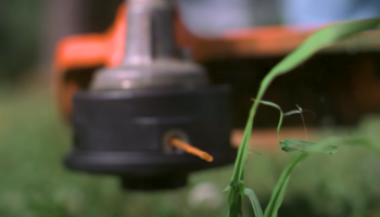 Watch A Weed Eater Obliterate Weeds At 62,000 Frames Per Second