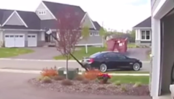 Woman Has Surprisingly Kind Exchange With Neighbor After He Annihilates Her Light Pole