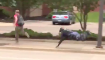 Police's Bicycle Squad Looks Even Dorkier In Video That Captures A Cop Falling Off His Bike