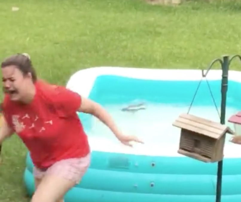 Girl Attempts To Rescue Squirrel Trapped In Kiddie Pool, But Her Plan Backfires Spectacularly