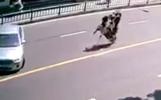 Scooter Flips Over To Avoid Collision, And Then Things Just Escalate From There