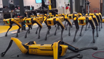 Cheeky Boston Dynamics Ad Shows Off All The Cool — And Terrifying — Stuff The Robot Dog Spot Can Do