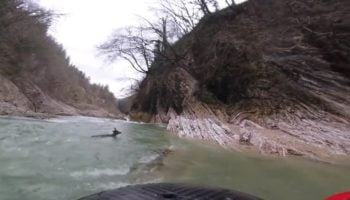 Kayaker Rescues A Deer That Got Swept Down The Rapids From Drowning
