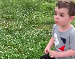 Watch This Kid Get Reunited With His Best Friend After Quarantine