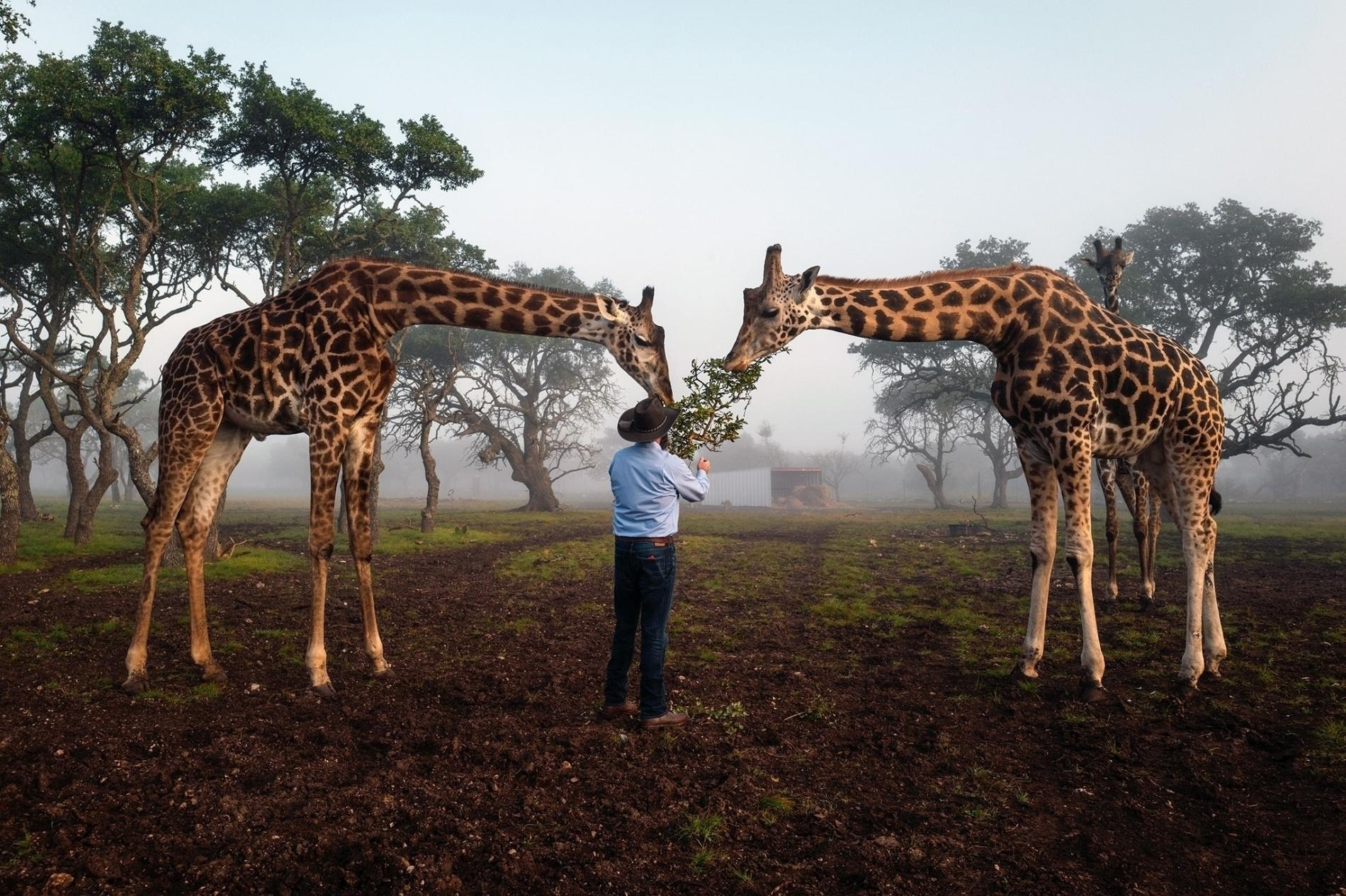 A Behind-The-Scenes Look At Texas' Exotic Animal Ranches