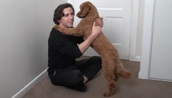 This Dog Had The Most Adorable Reaction After His Owner Taught Him How To Hug When He's Sorry
