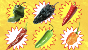 Get To Know These Chiles To Make Better Food