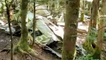 Hiker Discovers The Wreckage Of A Plane Crash From 1978 Deep In The Woods Of North Carolina
