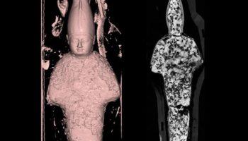 CT Scans Reveal Miniature Mummies' Surprising Contents
