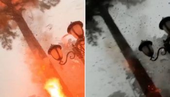 Man Narrowly Avoids Bolt Of Lightning Striking A Tree In His Front Yard In Shocking Footage Caught On Camera