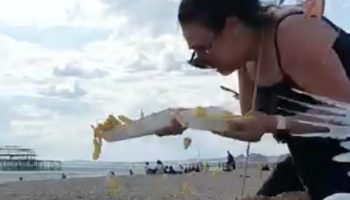 Watch This Woman Holding French Fries Hilariously Flee A Hungry Flock Of Seagulls