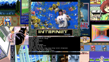 Three Algorithm-Less Streaming Sites Revive The Wacky Web From Days Of Yore