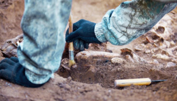 'What's The Coolest Thing You've Ever Found?' Real Archaeologists Share Their Favorite Finds