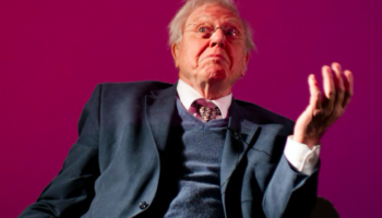 Someone Made An AI-Generated David Attenborough Voice Read NSFW r/Relationships Threads, And It's Genius